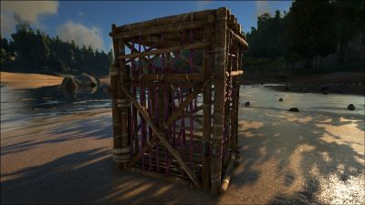 Wooden Cage PaintRegion3.jpg