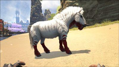Equus PaintRegion5.jpg