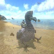 Giant Dodo.jpg