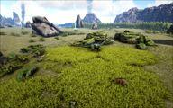 Grasslands 4.jpg