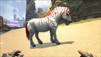 Equus - Official ARK: Survival Evolved Wiki