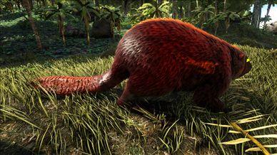 Mod Primal Fear Alpha Beaver.jpg