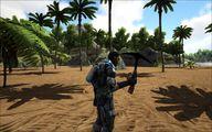 Black Pearl Pick 1.jpg