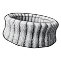 Comfy Collar (Mobile).png