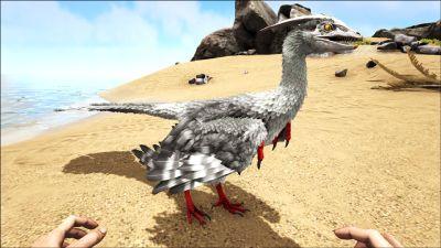 Microraptor PaintRegion2.jpg