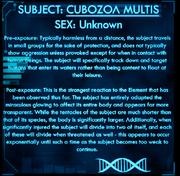 Dossier Cubozoa Multis.png