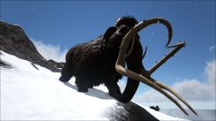 Mammoth in the Mountains.jpg