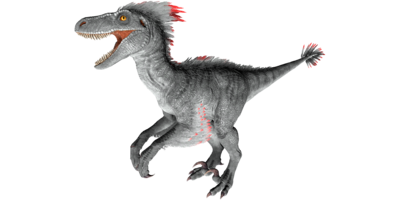 Raptor PaintRegion1.png