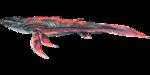Astrocetus PaintRegion0.png