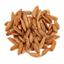 Rice Seed (Primitive Plus).png