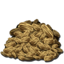Rockarrot Seed.png