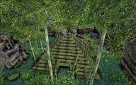 Jungle 8.jpg