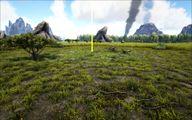 Grasslands 6.jpg