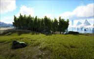 Grasslands 14.jpg