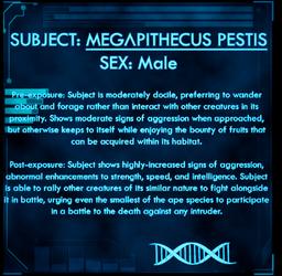 Dossier Megapithecus Pestis.png