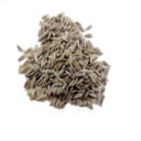Lettuce Seed (Primitive Plus).png