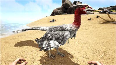 Microraptor PaintRegion4.jpg