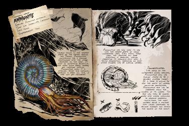 Dossier Ammonite.png