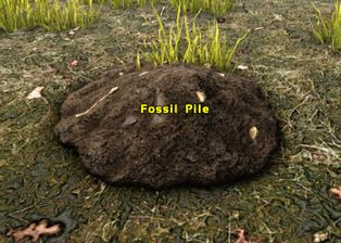 Fossil Pile.jpg