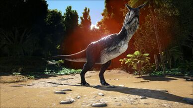 Alpha Carnotaurus Image.jpg