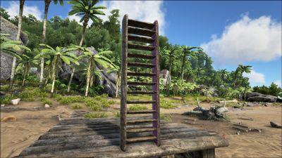 Wooden Ladder PaintRegion1.jpg