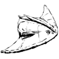 Thumbnail for version as of 22:46, 23 November 2015