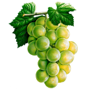 Grapes (Primitive Plus).png
