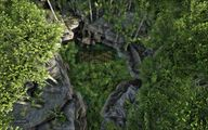 Jungle 7.jpg