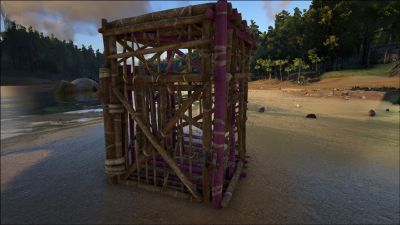 Wooden Cage PaintRegion2.jpg