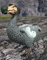 Dodo asig.png