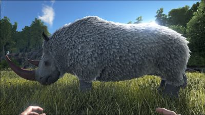 Rhino PaintRegion5.jpg