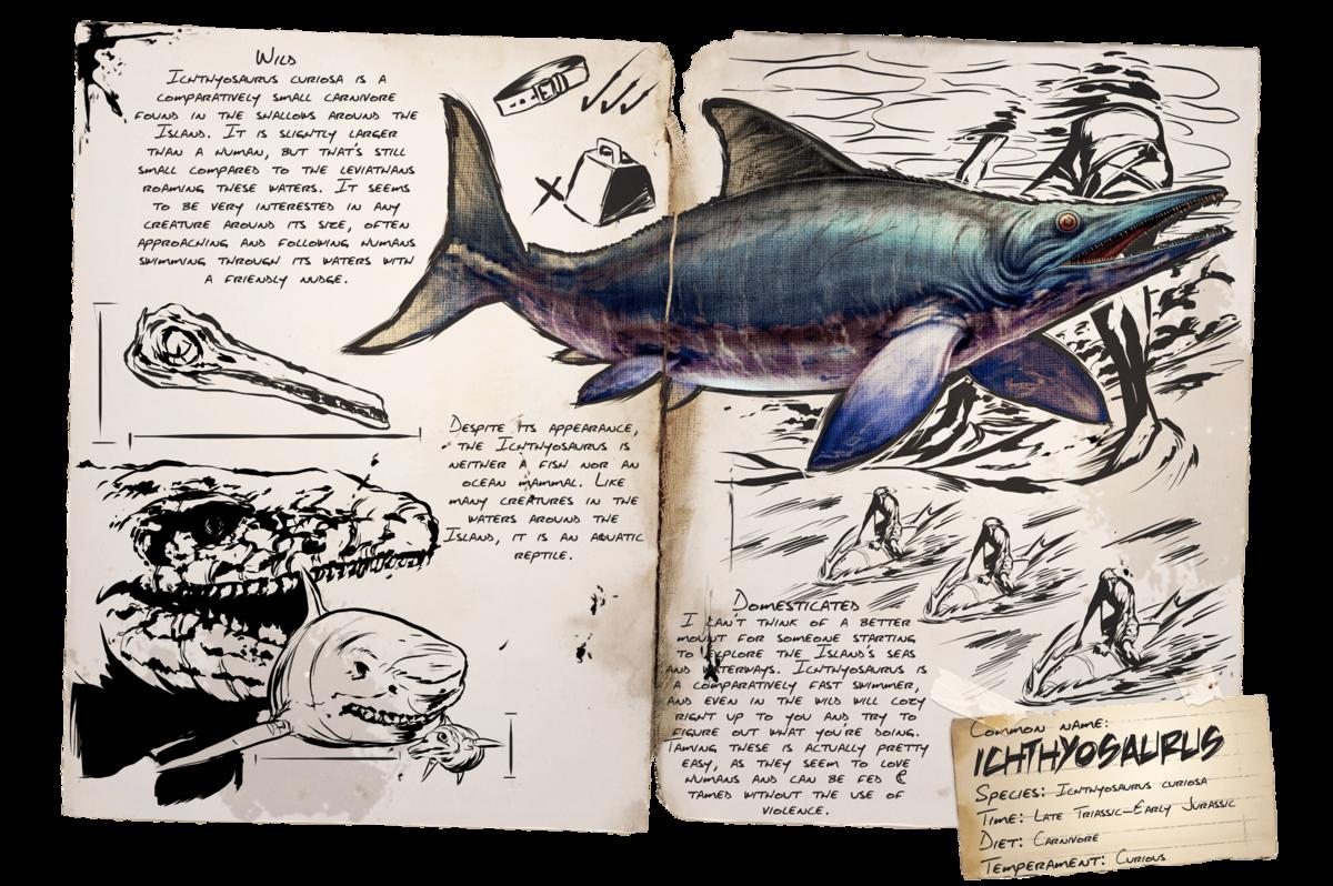 Ark Delphin