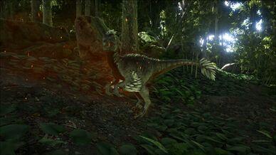 Alpha Raptor Image.jpg