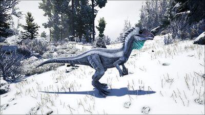 Mod ARK Additions Cryolophosaurus PaintRegion3.jpg