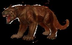 Thylacoleo large.png