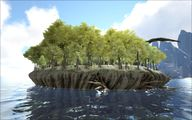 Turtle Island 5.jpg
