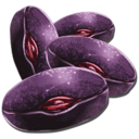 Mejoberry Seed.png