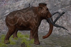 Mammoth Size.png
