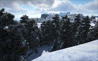 Snow Biome 28.jpg