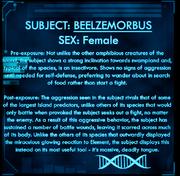 Dossier Beelzemorbus.png