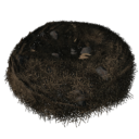 Wyvern Nest (Scorched Earth).png