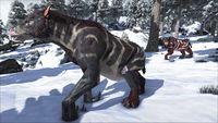 ChalicotheriumSnow.jpg