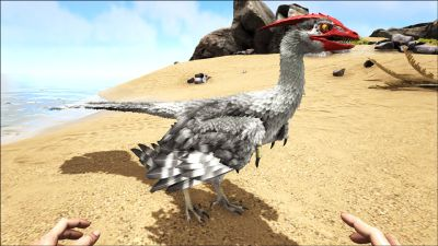 Microraptor PaintRegion1.jpg