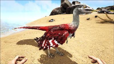 Microraptor PaintRegion0.jpg