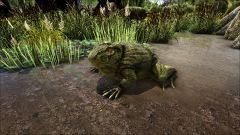 Beelzebufo in the Swamp.jpg