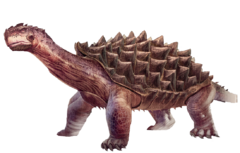 Render Turtle.png