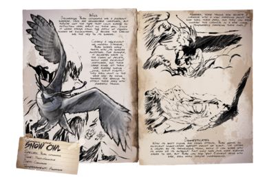 Snow Owl - Official ARK: Survival Evolved Wiki