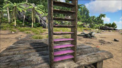 Wooden Ladder PaintRegion2.jpg