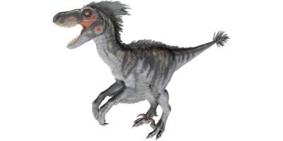 X-Raptor PaintRegion4.png