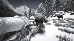 Primal Survival 3.jpg